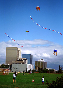 Kite fliers on the Park Strip
