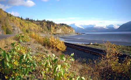 Fall scene along Turnagain Arm